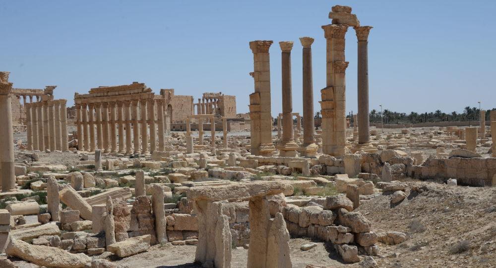 Historyczna część Palmiry. Zdjęcie archiwalne