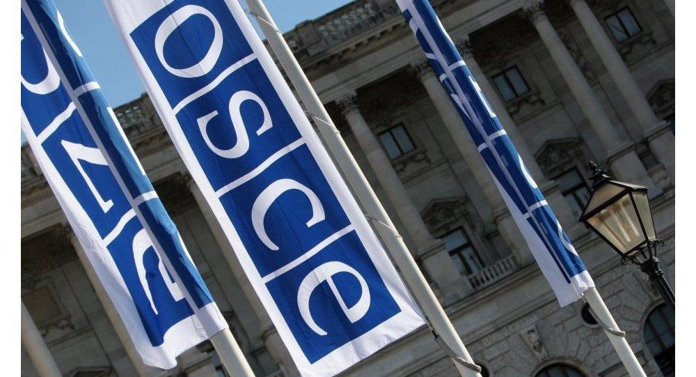 Flagi z logo OBWE w Wiedniu