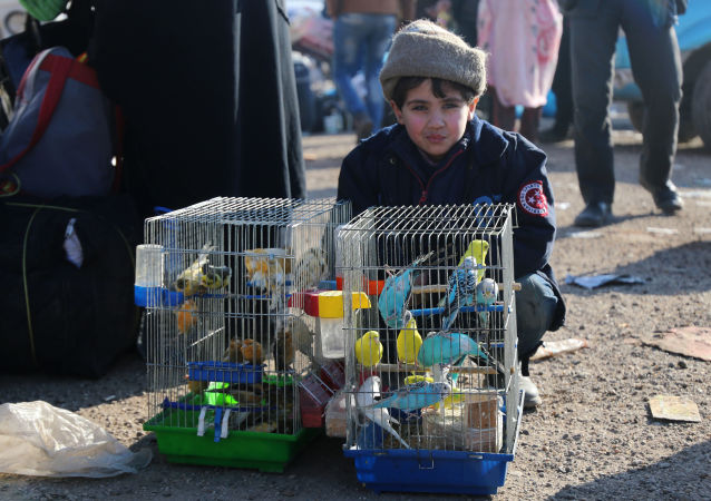 Sytuacja w Aleppo, 20 grudnia 2016