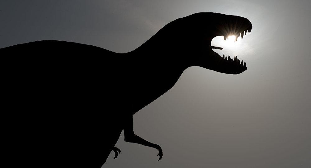 Do niedawna nauka znała tylko kilka pojedynczych przypadków  skamieniałych jaj dinozaurów i fragmentów ich skorup