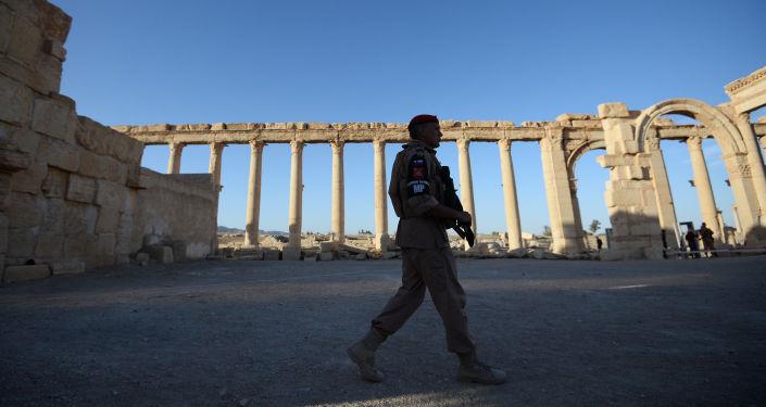 Żołnierz w historycznej części Palmiry