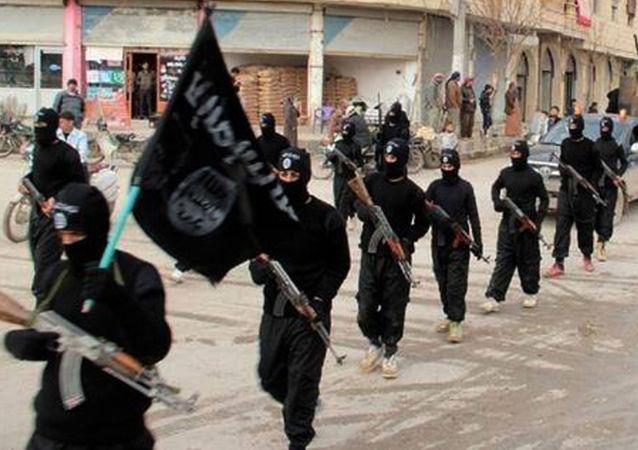 Członkowie PI, Rakka, Syria