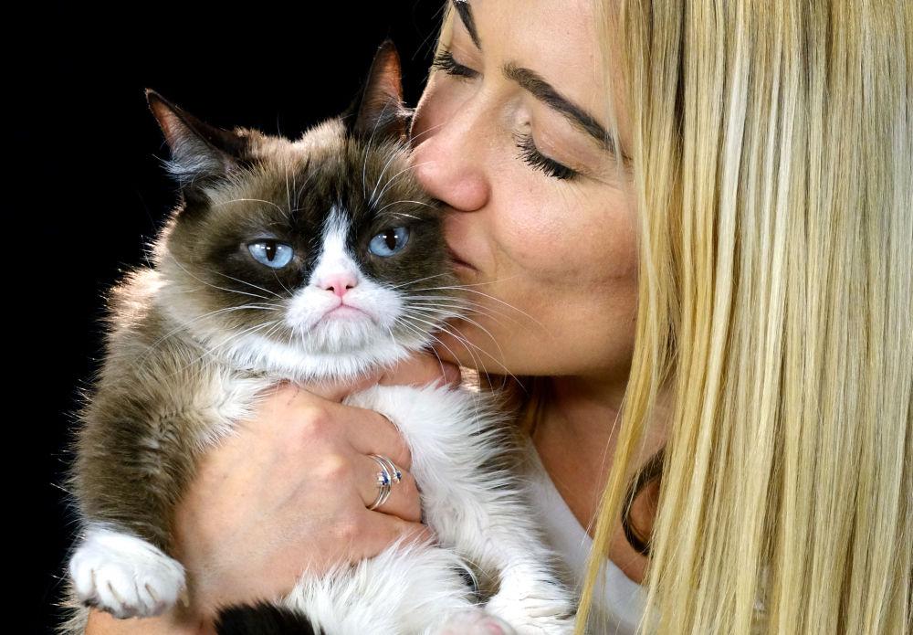 """""""Zrzędliwy kot"""" (Grumpy Cat) stał się bohaterem najróżniejszych memów i demotywatorów po umieszczeniu 22 września 2012 roku w blogu Reddit jego pierwszego zdjęcia."""