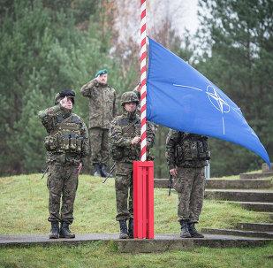 Polska - flaga NATO