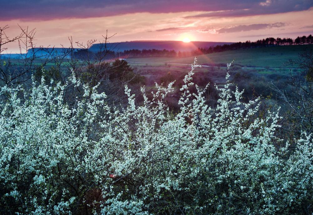 Zachód słońca we wsi Klinowka na Krymie.