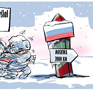 Napoleońska porażka USA