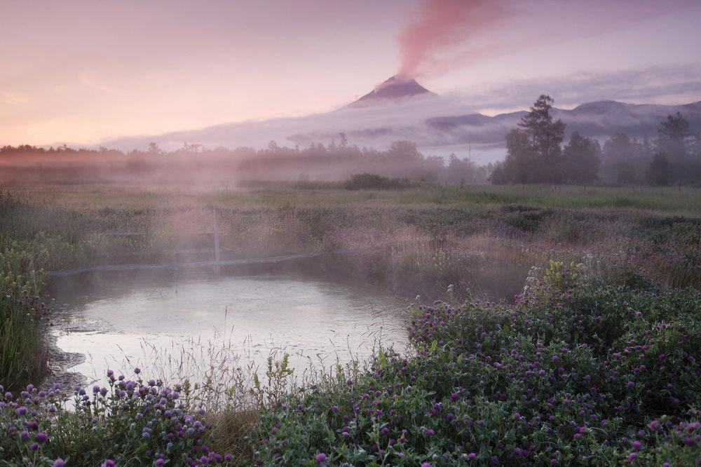 Na terenie Kronockiego Rezerwatu Biosfery jest około tysiąca gorących źródeł.