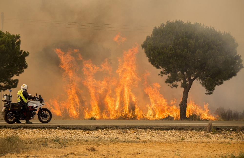 Policjant obserwuje rozprzestrzenienie się pożaru lasu na południu Hiszpanii