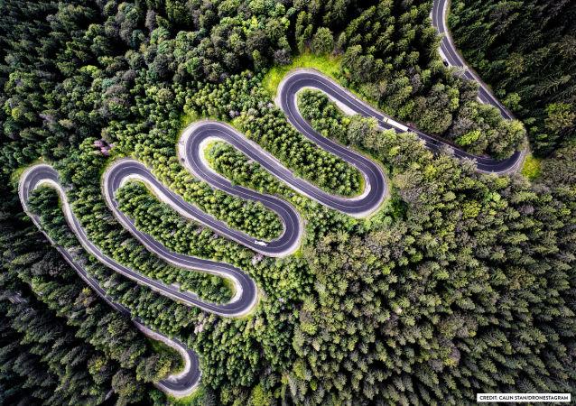 Zdjęcie Nieskończona droga do Transylwanii. II miejsce w kategorii Natura.