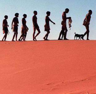 Pustynny krajobraz Kalahari w RPA