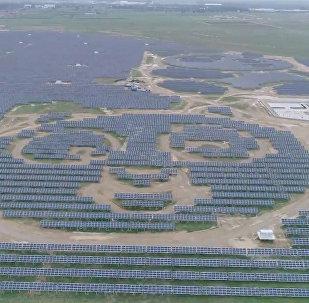 Elektrownia słoneczna w kształcie pandy