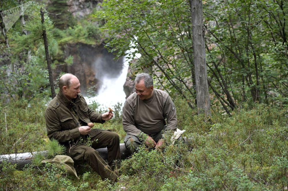 Prezydent Rosji Władimir Putin i Minister Obrony Rosji Siergiej Szojgu w trakcie wyprawy do lasu w Republice Tuwa