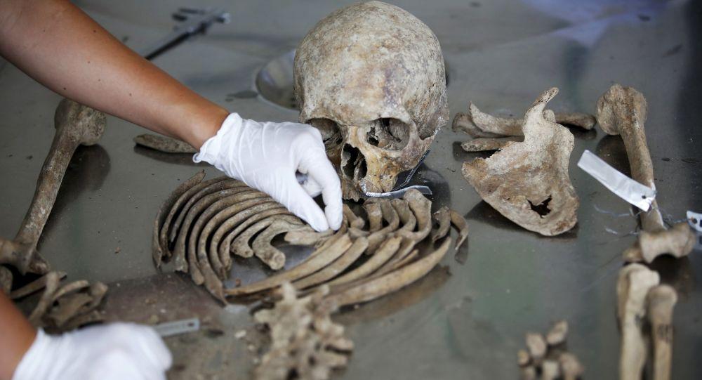 Antropolog sądowy Międzynarodowej komisji ds. zaginionych osób identyfikuje szczątki ofiar zabójstw w Srebrenicy
