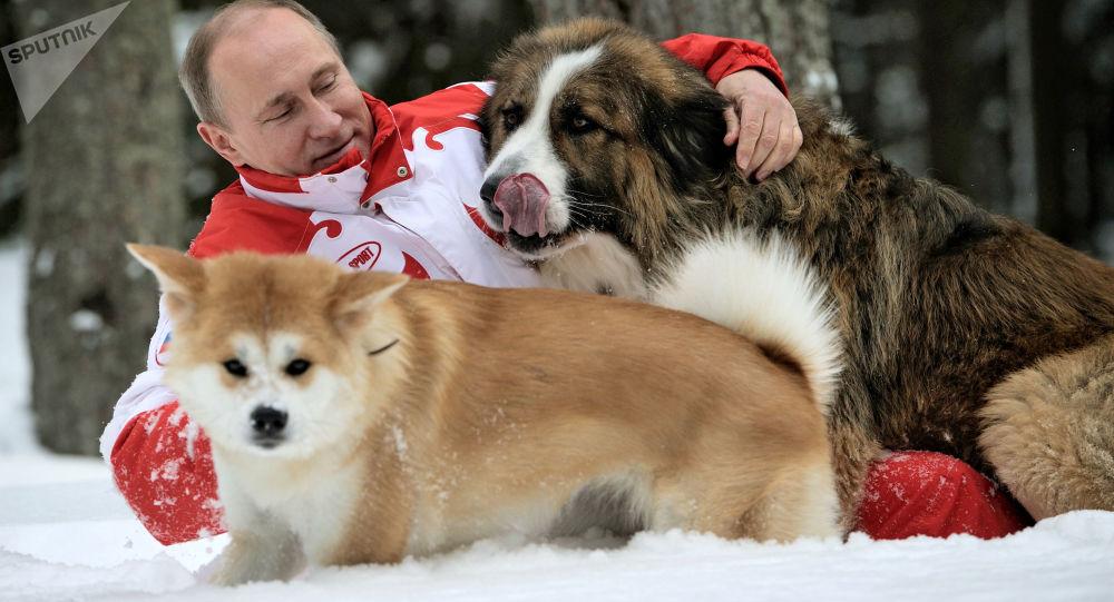 Władimir Putin z psami Buffy i Yume