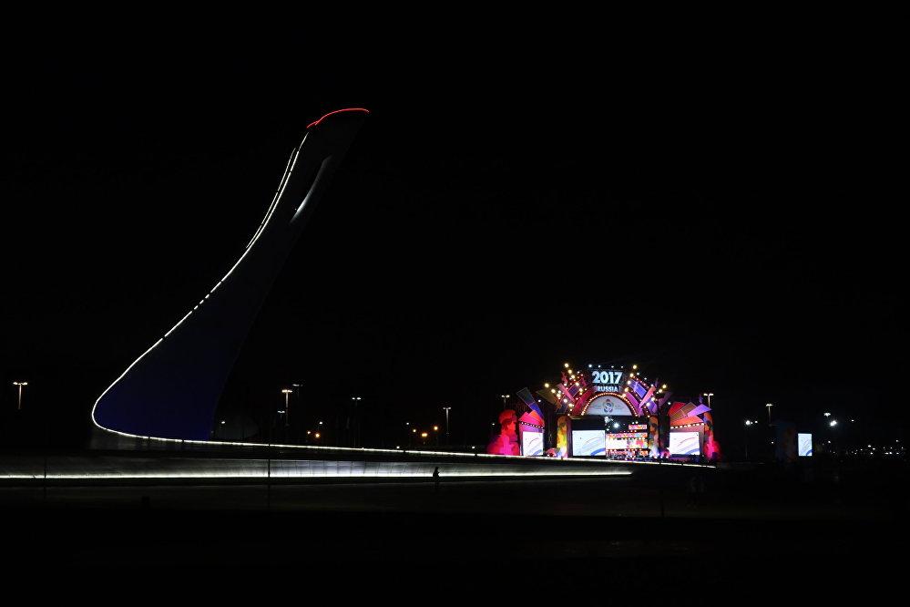 Znicz olimpijski w Soczi