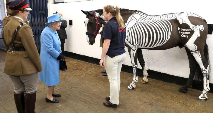 Królowa Wielkiej Brytanii Elżbieta II w czasie odwiedzin w stajni kawalerii na zachodzie Londynu