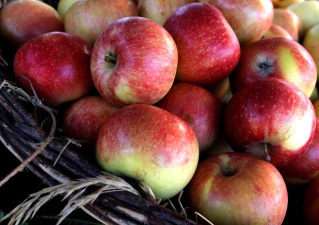 Jabłka na targu rolniczym na centralnym placu Władywostoku