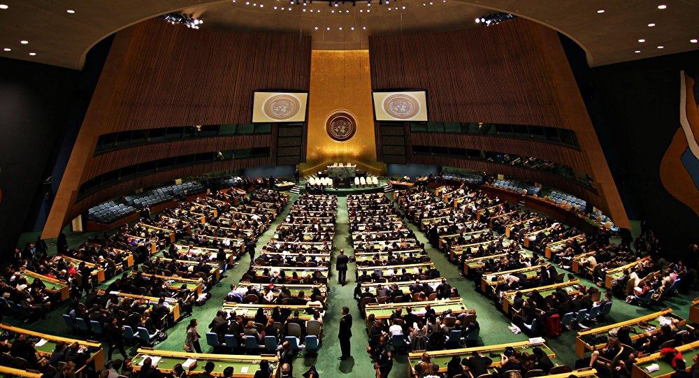 Zgromadzenie Ogólne ONZ
