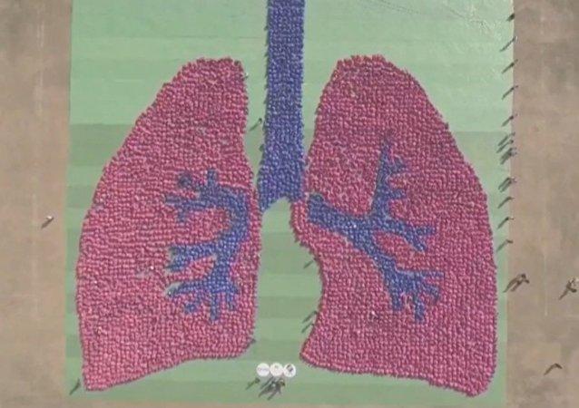 Gigantyczny wizerunek ludzkich płuc