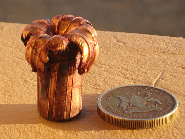 Kula kalibru 458 po strzale do bawoła afrykańskiego