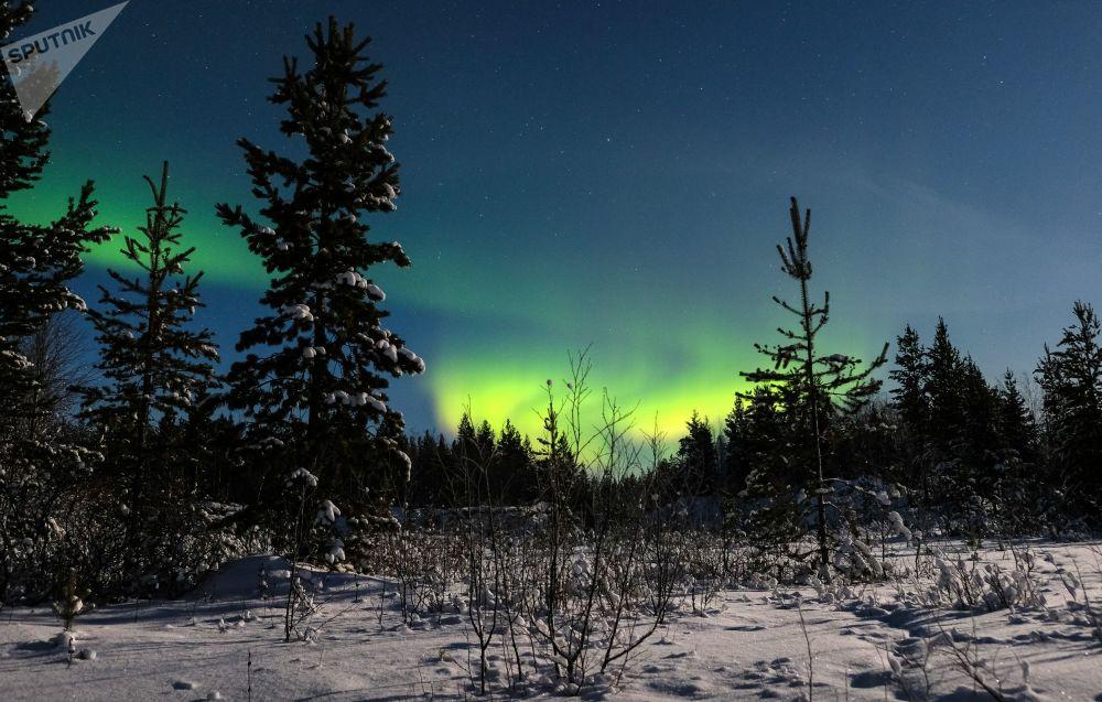 Zorza polarna w okolicach miejscowości Łowoziero w rejonie Murmańska