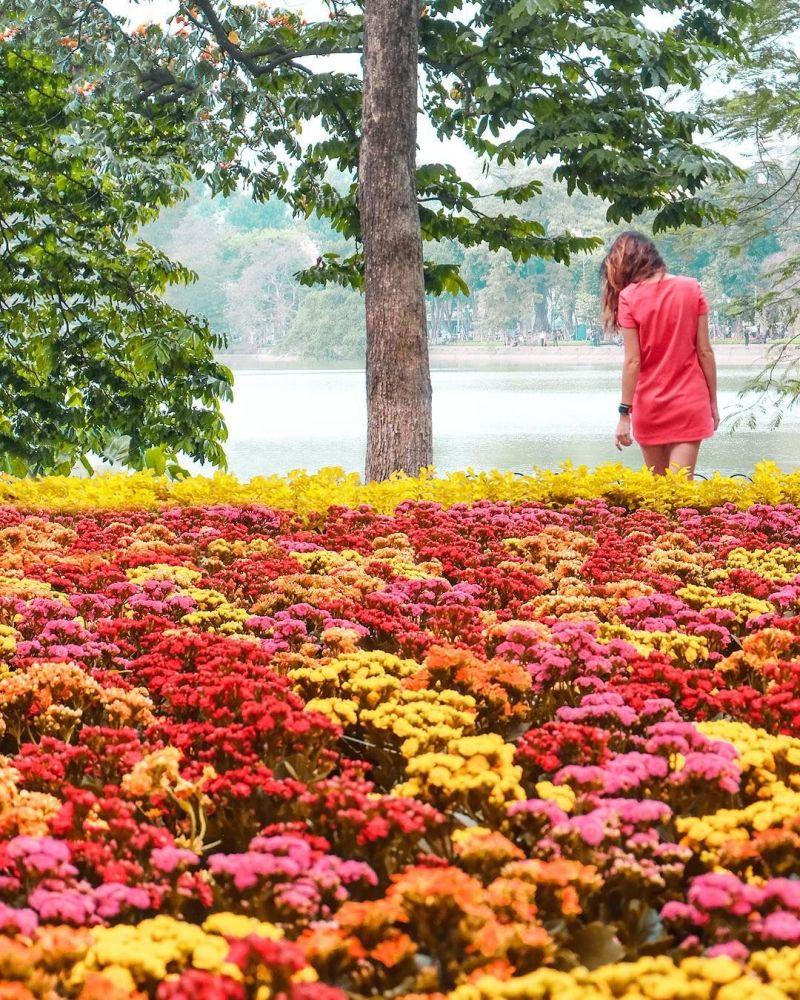 Przyroda Hanoi - fotografia dla projektu Jak daleko od domu