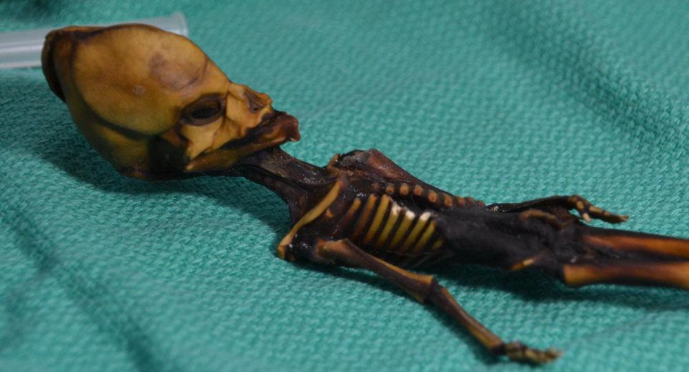 Humanoid znaleziony w 2003 roku na pustyni Atakama w Chile