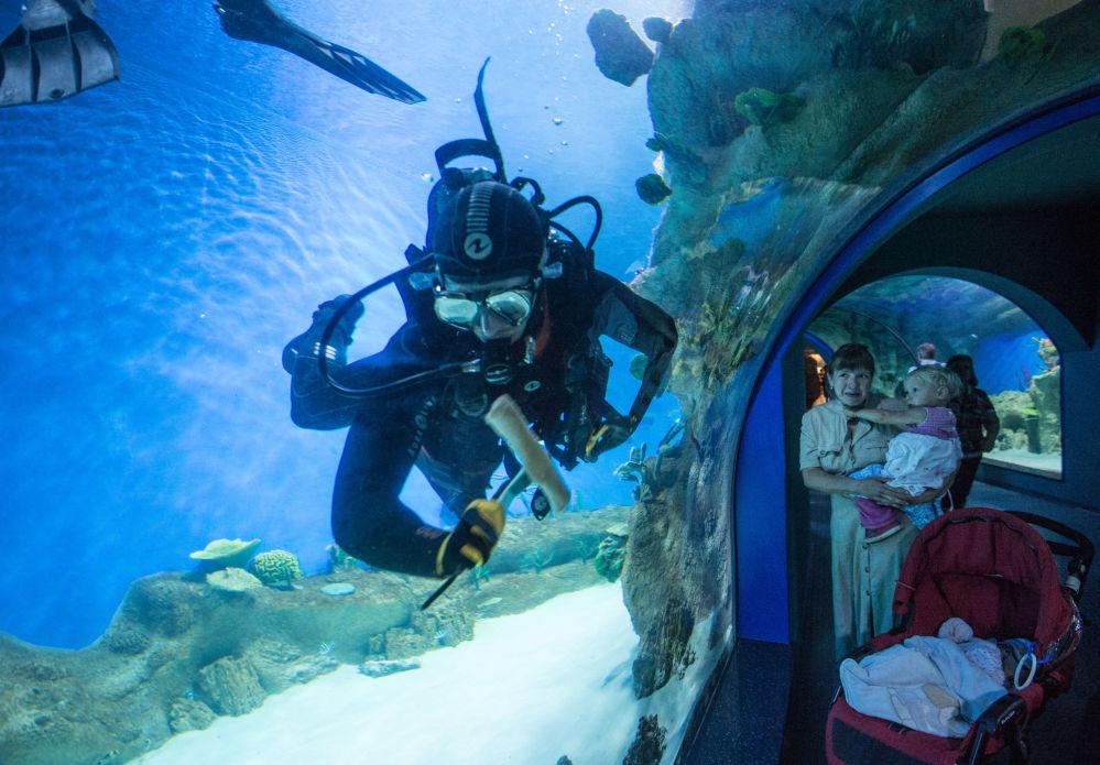 Goście w największym w Europie centrum oceanografii i biologii morskiej Moskwarium na WDNCh w Moskwie
