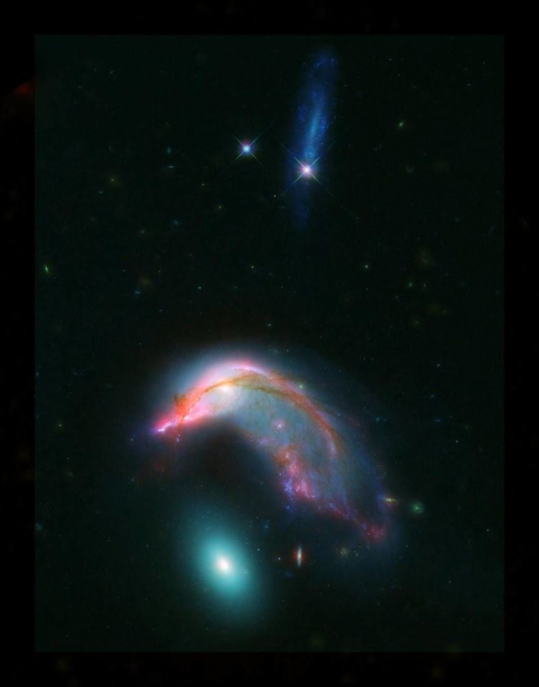 Galaktyki Arp 142