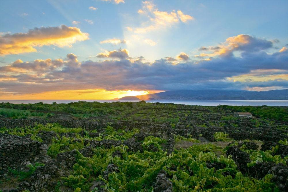 Wyspa Pico na środkowym Atlantyku