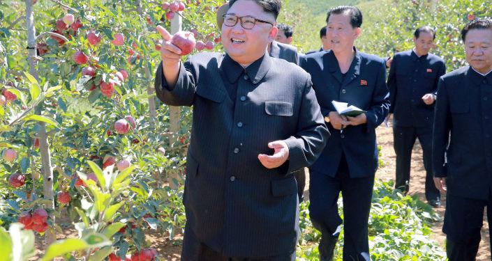 Przywódca KRLD Kim Dzong Un