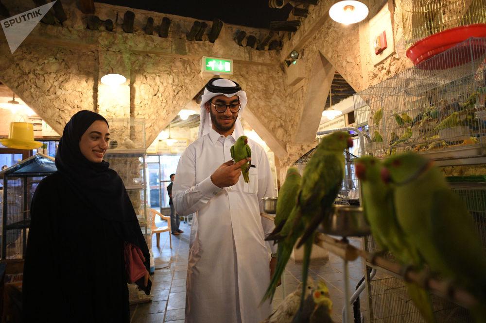 Sklep zoologiczny. Targowisko Souq Waqif w mieście Doha