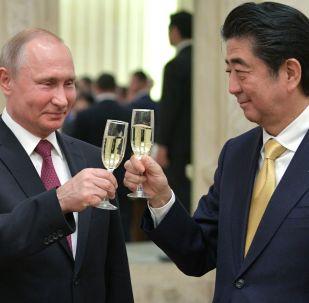 Prezydent Rosji Władimir Putin i premier Japonii Shinzo Abe
