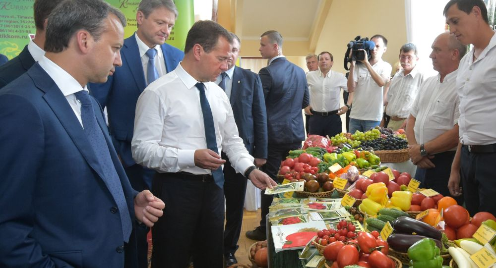 Szef rządu FR Dmitrij Miedwiediew