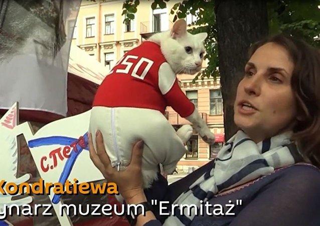 Ermitażowy kot Achilles