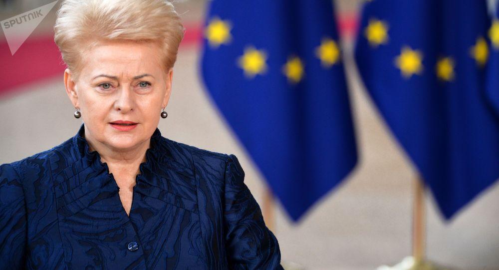 Prezydent Litwy Dalia Grybauskaitė. Zdjęcie archiwalne