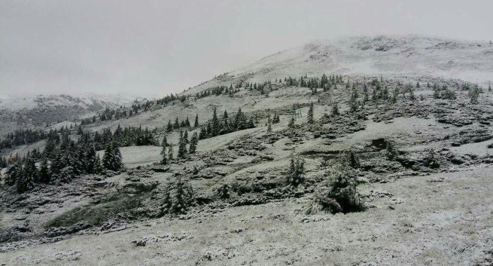 Śnieg w Zakarpaciu