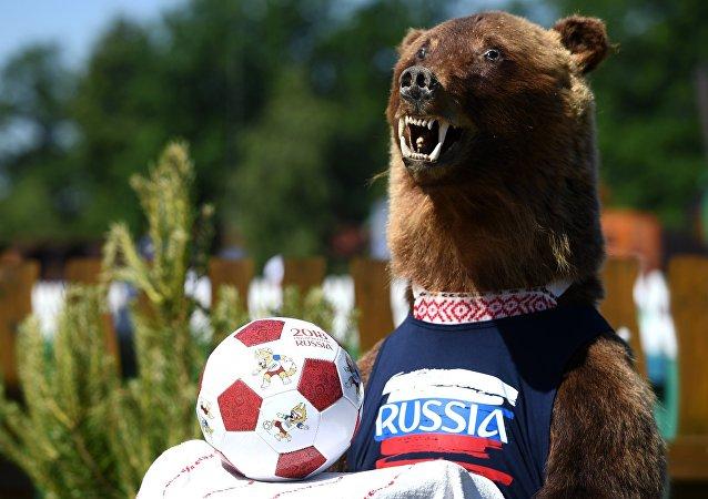 Wypchany niedźwiedź w Kazaniu, MŚ 2018