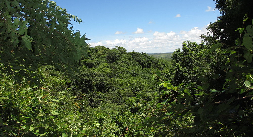 Las w Mozambiku