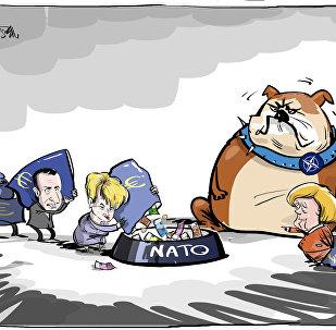 Zrzutka na NATO