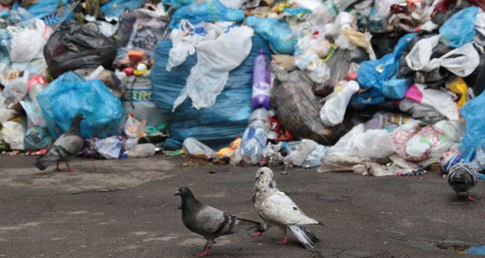 Niewywiezione śmieci, Ukraina