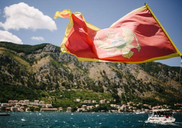 Widok na miasto Kotor w Czarnogórze