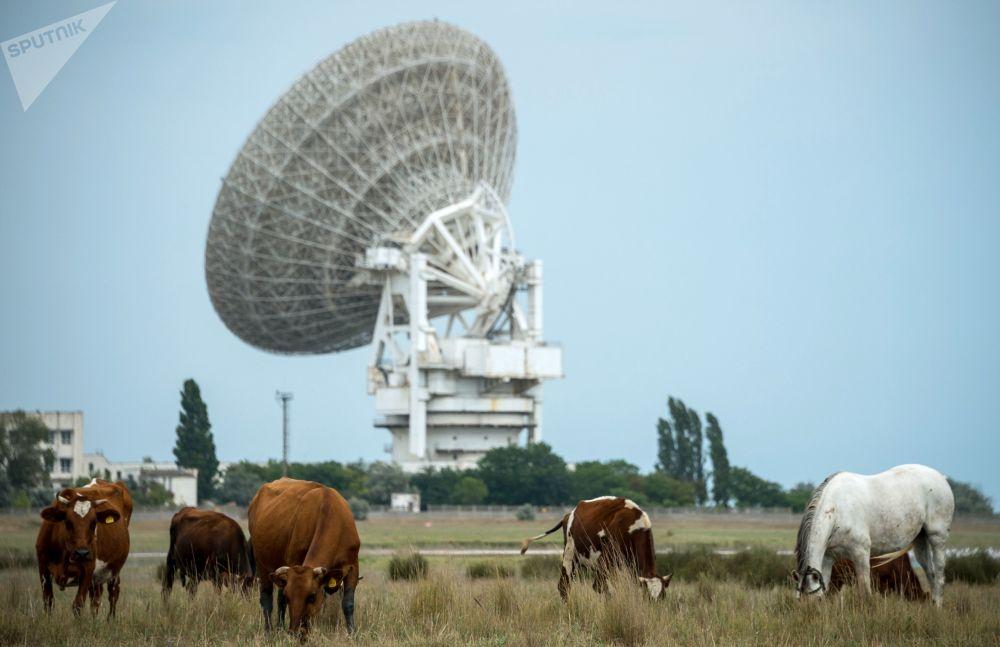 Radioteleskop P-2500 (RT 70) na terytorium Centrum komunikacji kosmicznej pod Eupatorią