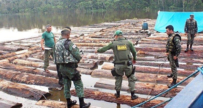 Bliskie spotkanie z dzikim plemieniem Amazonii