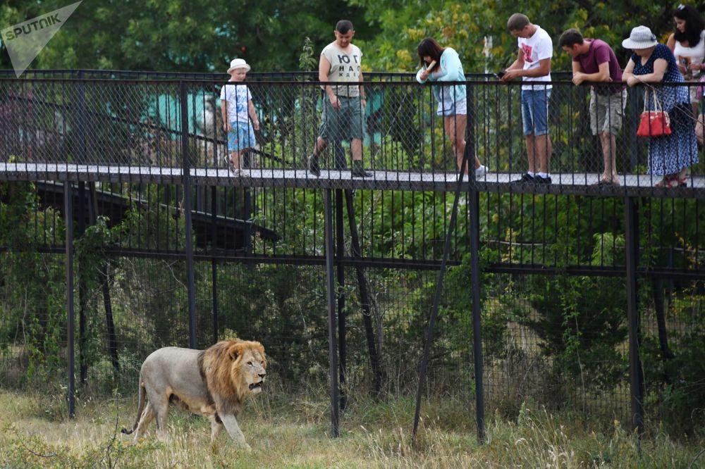 Park safari Tajgan na Krymie