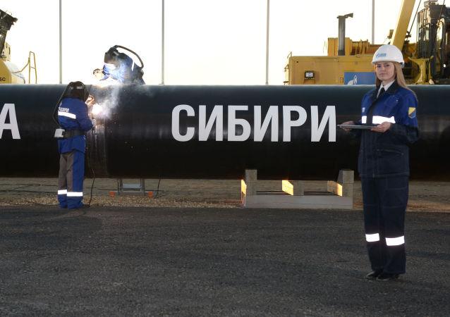 Spawanie szwu na uroczystości połączenia pierwszego ogniwa gazociągi Siłą Syberii na Trakcie Namskim w obecności Władimira Putina