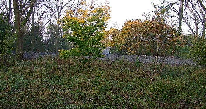 Ogrodzone miejsce, gdzie w badaniach sondażowych odnaleziono zbiorowe mogiły jeńców radzieckich