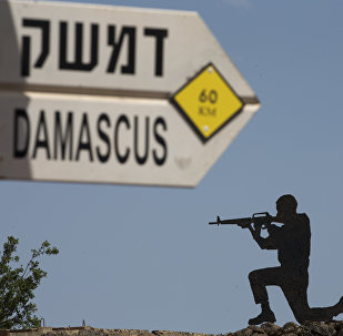 Żołnierz na Wzgórzach Golan