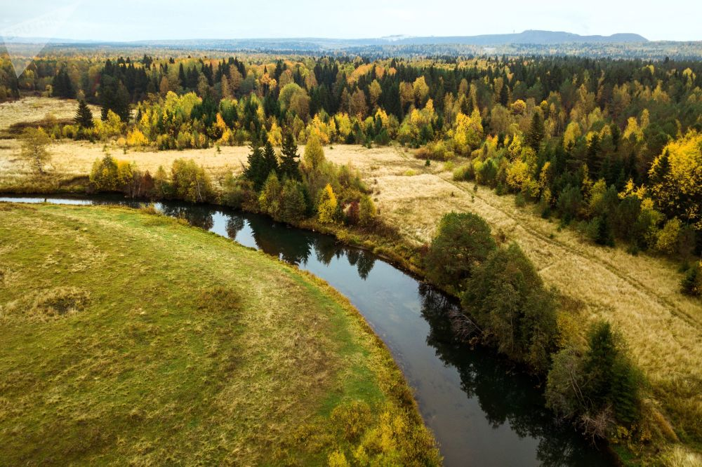 Las w barwach jesieni w Kraju Permskim