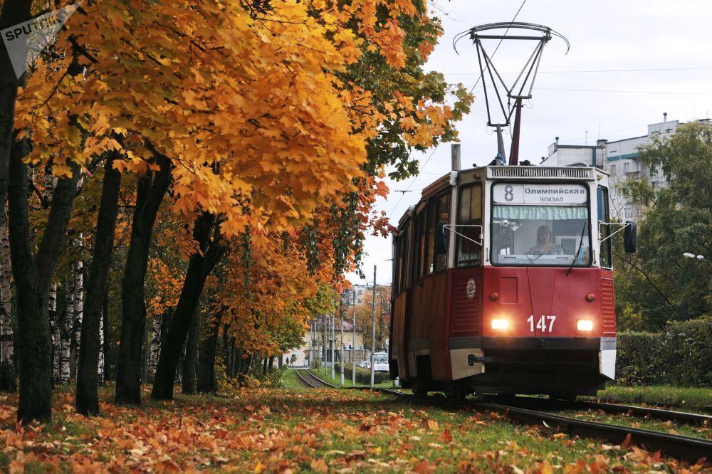 Tramwaj na jednej z ulic Wołogoda